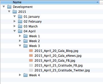 Organize in Folders[1]